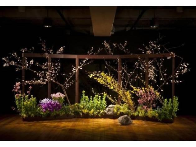 川崎景太×百段階段 ~過去の扉を開き未来の鍵を探す 異次元の花世界~