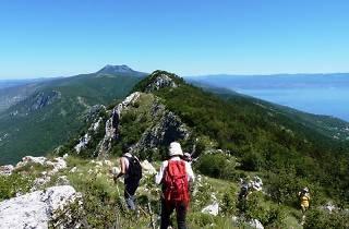 Labin Rabac Trail