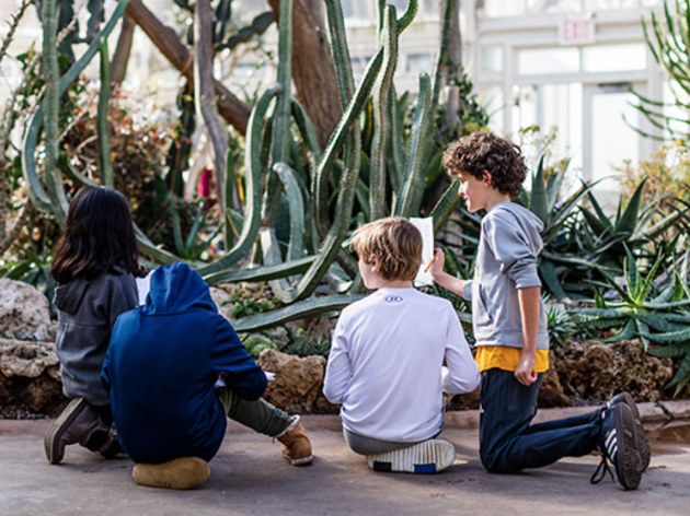 Drop-In Nature Exploration at the New York Botanical Garden