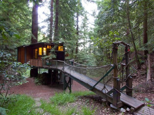 CA treehouse