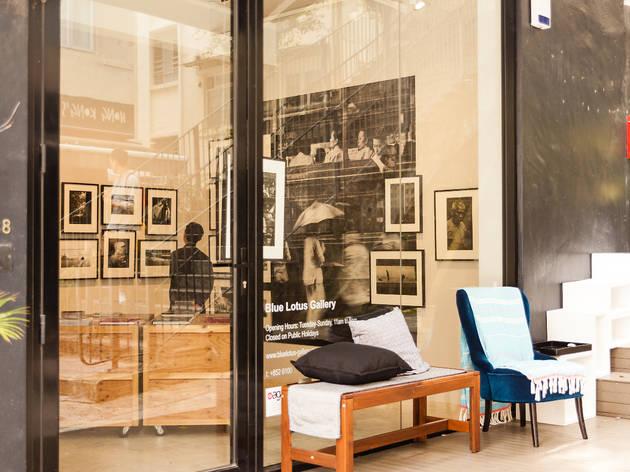 blue lotus gallery-pr-14-02-2020