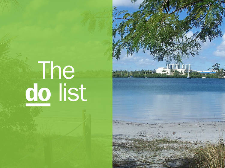 The 20 best things to do in Florida