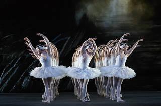 SWAN LAKE_The Royal Ballet_ROH.Odette_Odile; Akane Takada,Prince; William Bracewell,Queen Mother; Kirsten McNally,Rothbart; Thomas Whitehead,