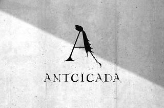 アントシカダ