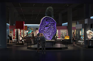 Museum of Natural History announces the opening of a newly redesigned hall