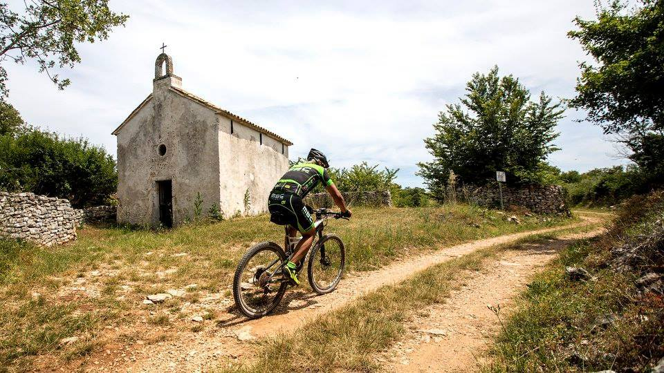 Cycling in South Istria