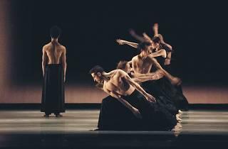Ballet Vlaanderen in Kaash
