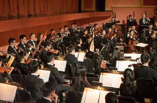Shen Yun 2020 orchestra (Photograph: Supplied)