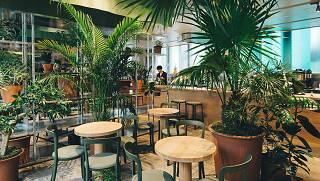 Switch Coffee Tokyo K5