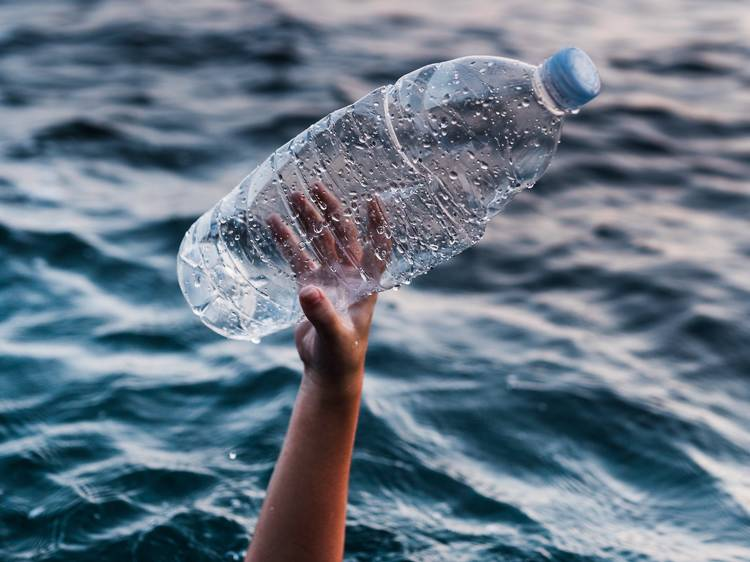 Más peces, menos plásticos