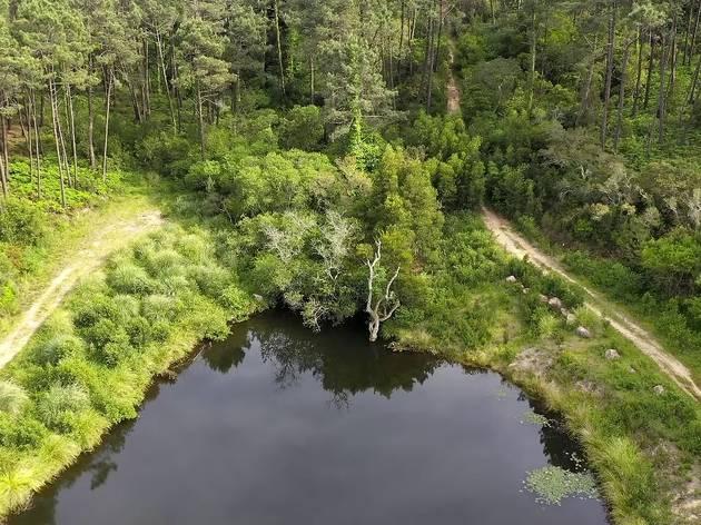 Lagoa dos Mosqueiros