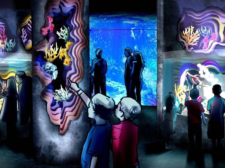 Visit the northeast's first SEA LIFE Aquarium