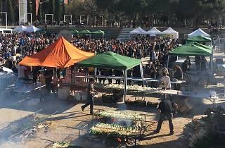 The Calçot Festival