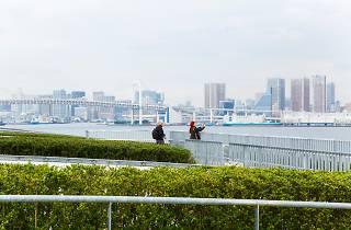 Toyosu Market rooftop garden