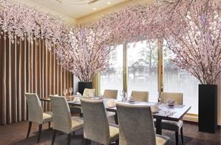 「SAKURAルーム」でお花見パーティープラン