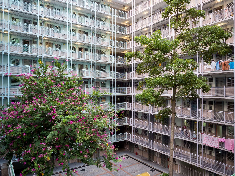 Sai Wan Estate-Shutterstock06-03-2020