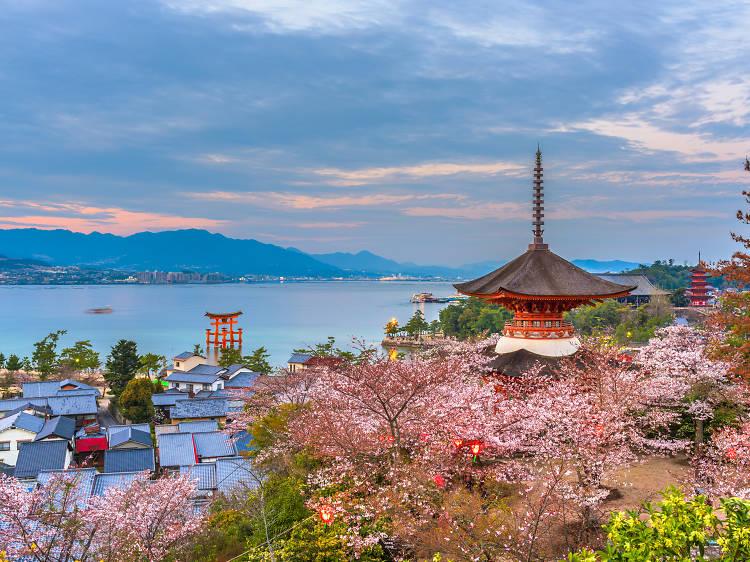 Mar 11-23, Hiroshima