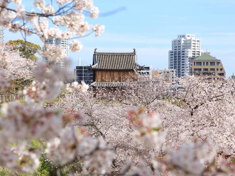 Mar 12-23, Fukuoka