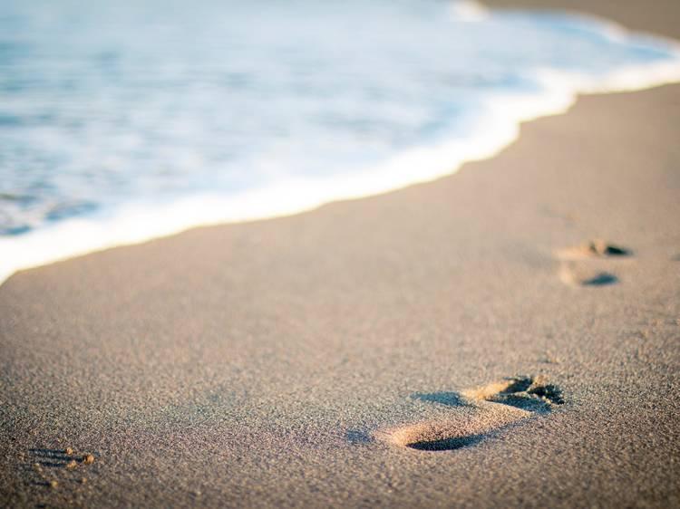 Lipor lança campanha para incentivar a recolha de lixo nas praias