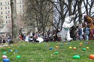 Easter Egg Hunt & Bunny Fun from Think 'n' Fun