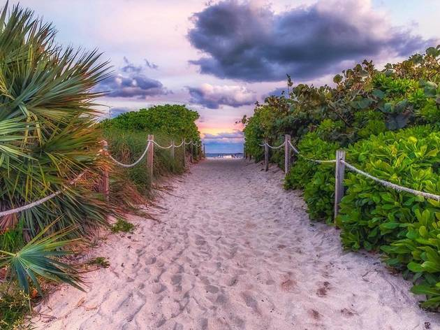 Find your beach: You can now virtually chill on 825 miles of pristine Florida coastline