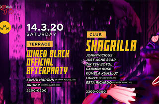 Pisco Bar pres. Wired Official Afterparty X Shagrilla of Queer 5