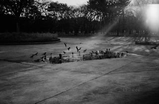 TAKAY 個展「Fluence: The Continuance of Yohji Yamamoto」