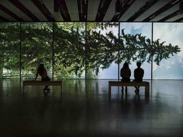 Among the trees at Hayward Gallery