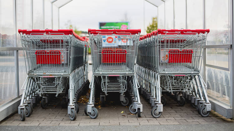 Supermarket shopping trollies