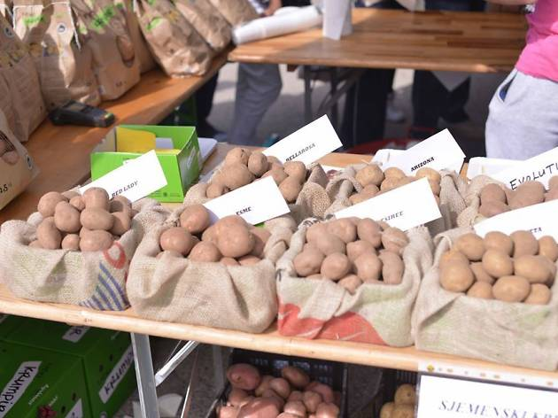 Lika potatoes (Lički krumpir)