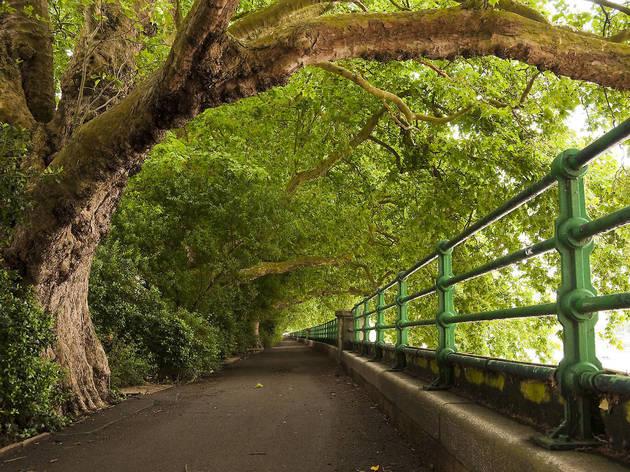 The Thames Path