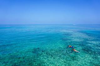 Look for Adriatic treasures while snorkeling