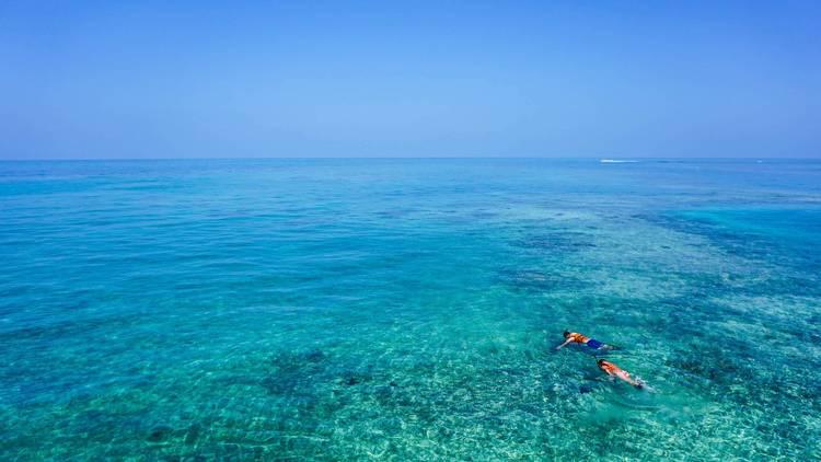 Look for Adriatic treasures while snorkeling