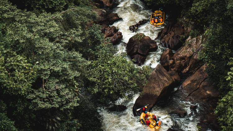 Try white-water rafting