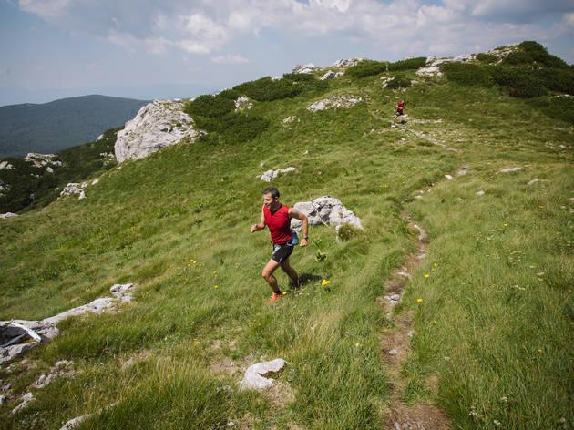 Go mountain running