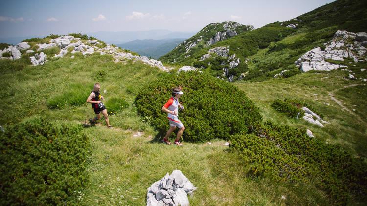 Jog alongside panoramic viewpoints