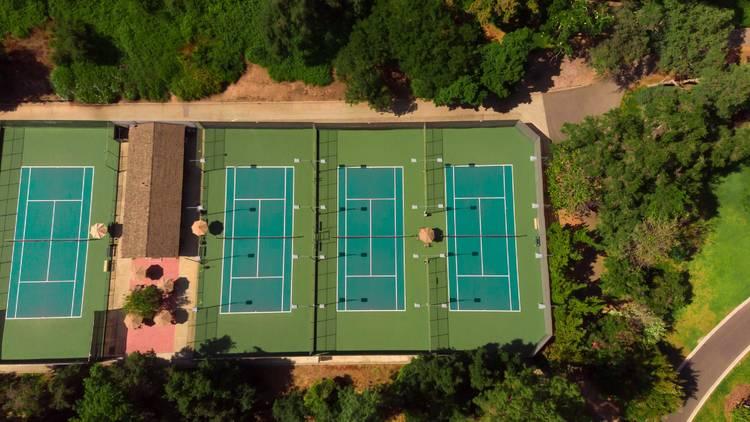Play tennis among Mediterranean pine trees