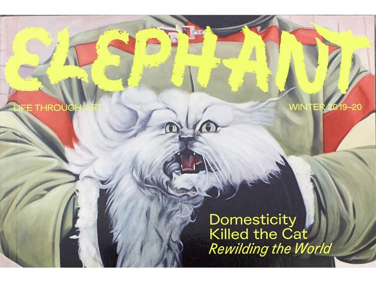 Read a beautiful art magazine