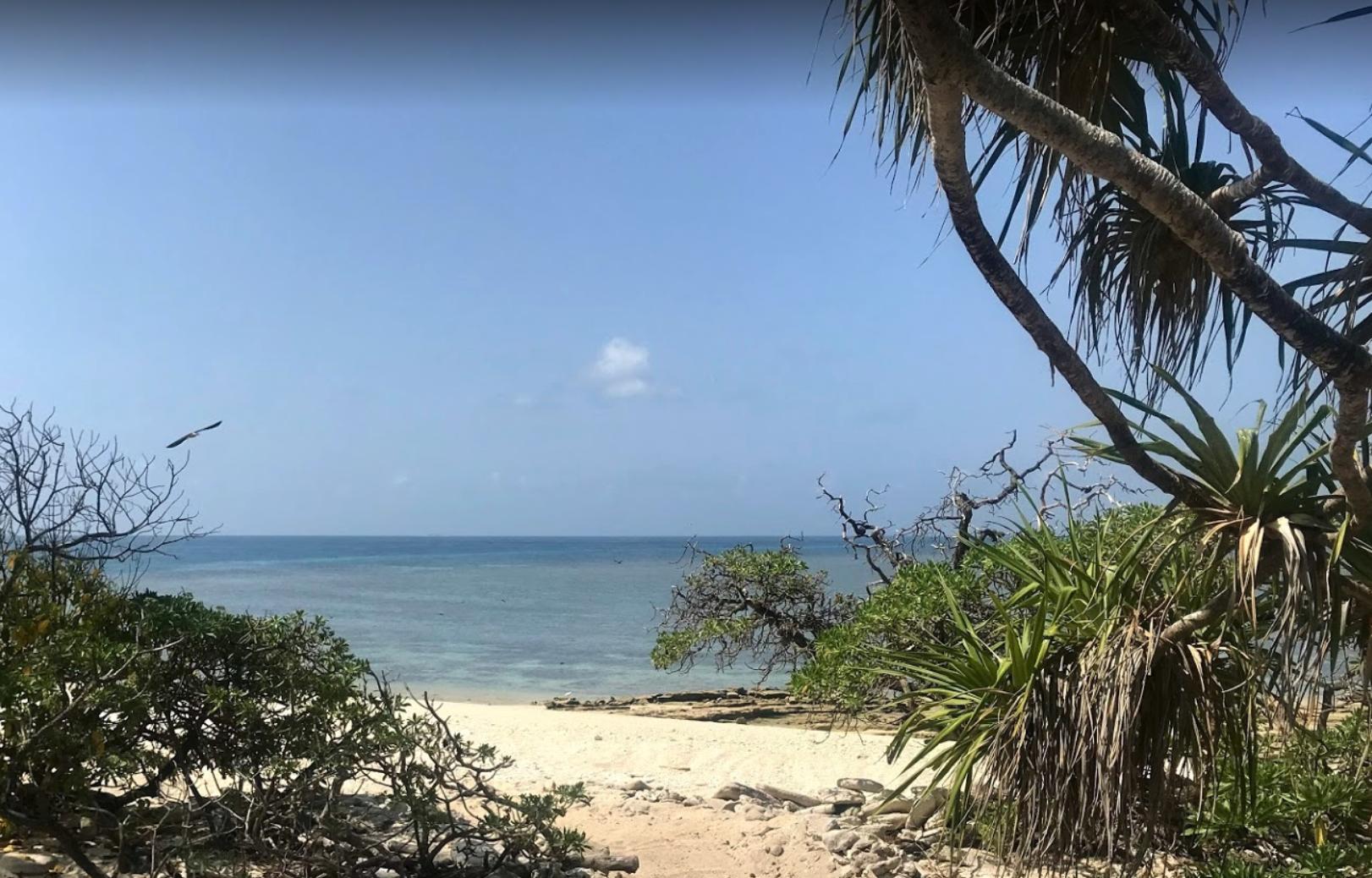 Ilhas Wilson