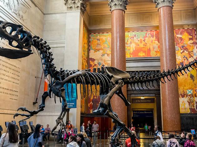 Tour NYC museums
