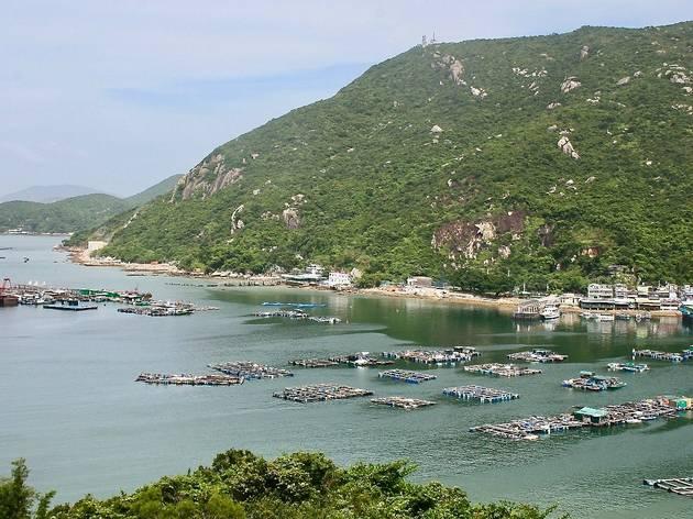 香港六個親子樂行山徑推介