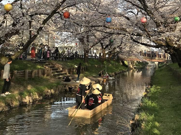 Kawagoe Shingashi River