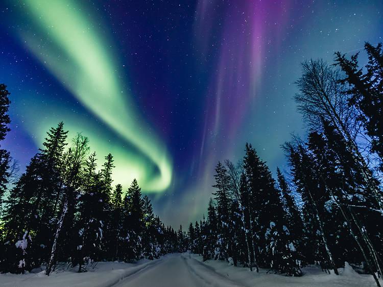Live-stream the Northern Lights