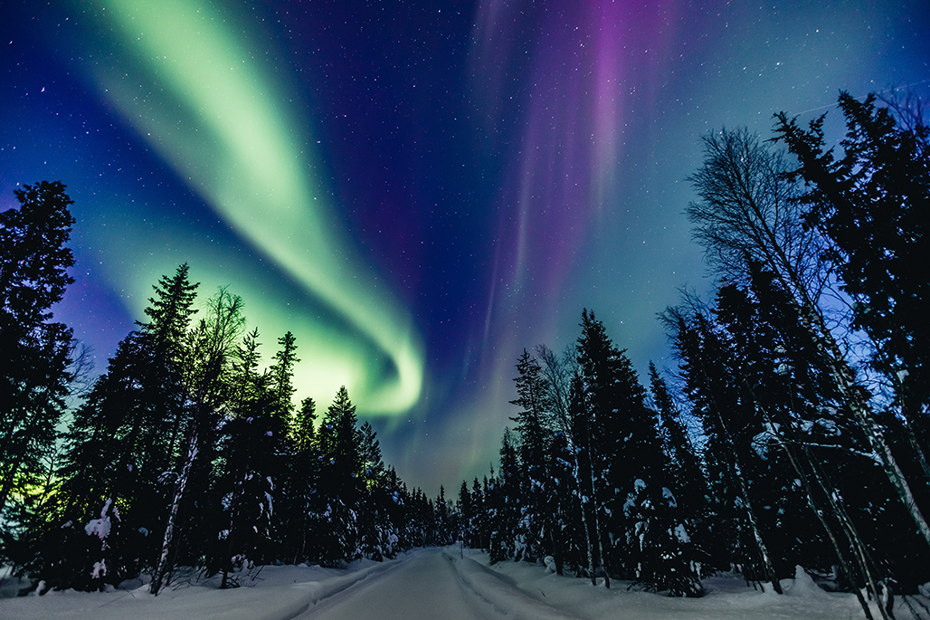 Aurora Borealis, Finland I Photo by Ekaterina Kondratova from Shutterstock