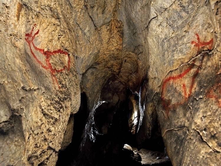 Cantabria: Cueva de Covalanas