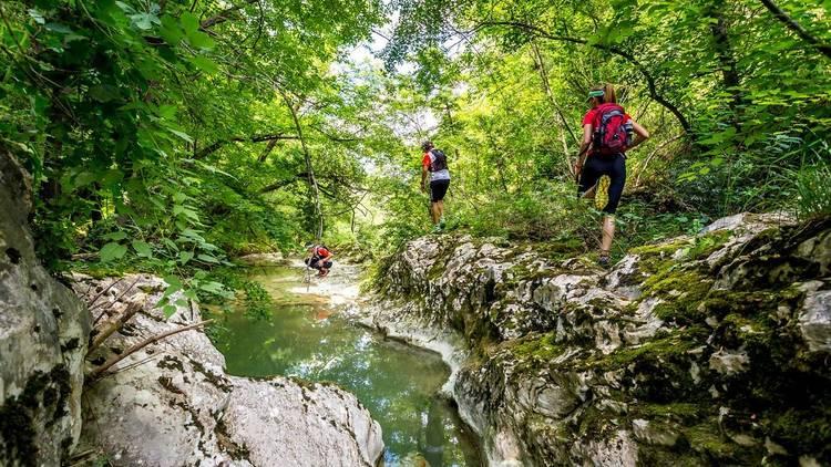 Istria's leafy Mirna river