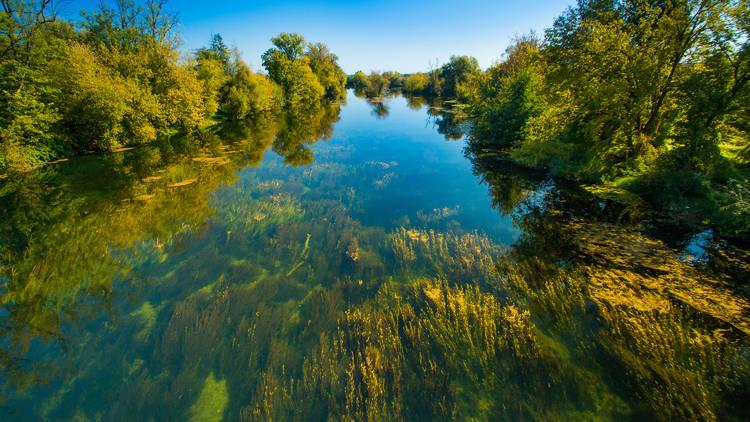 Crystal-clear Korana river near the city of Karlovac