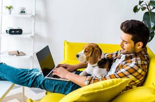 Hombre joven haciendo home office con su perro