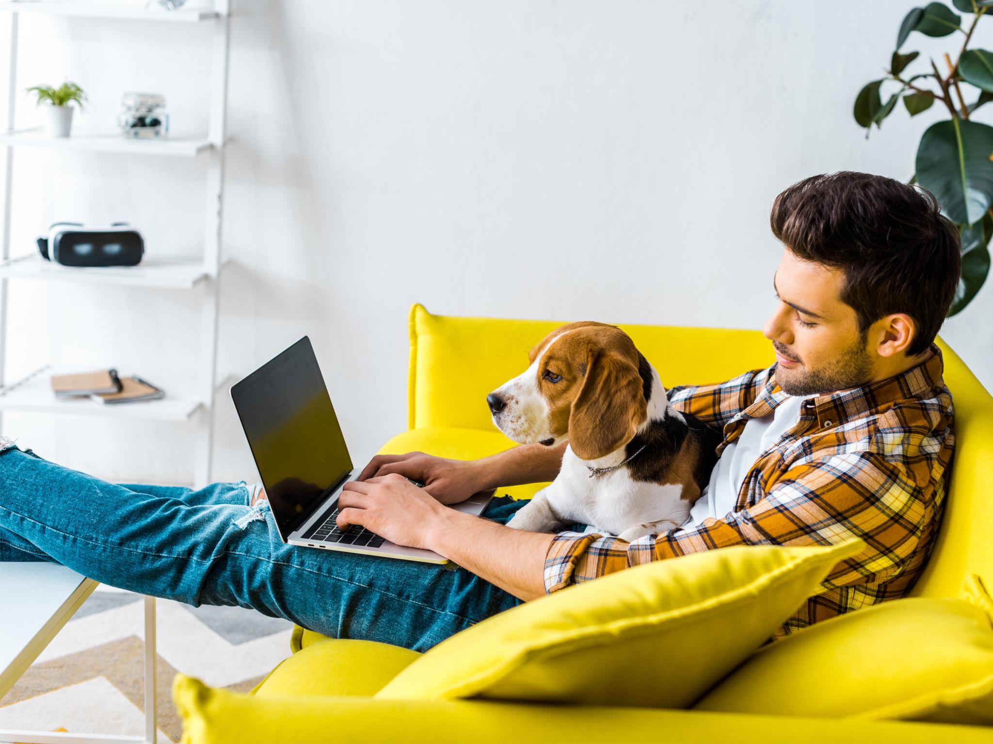 8 cosas que necesitas para sobrevivir al home office