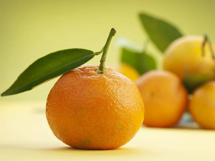 Neretva mandarins